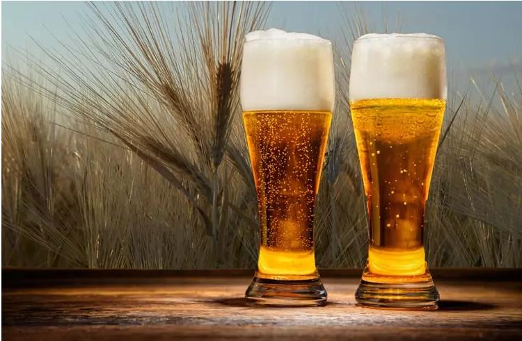 sus304 beer fermenter
